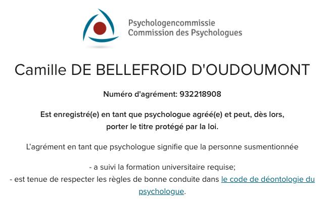 Camilledebellefroidpsychologuekinésiologuewoluwesaintlambertlahulpeenfantsadolescents